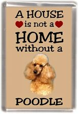 "Poodle (Apricot) Dog Fridge Magnet ""A HOUSE IS NOT A HOME"" by Starprint"