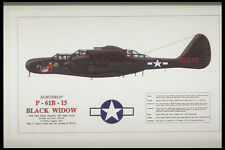 419053 Northrop P 61B 15 Black Widow A4 Photo Print