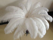 Free shipping 10 pcs beautiful white ostrich feathers 14-16 inches /35-40 cm
