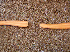 """1000 PLUS """"ALL ORGANIC""""  Live Mealworms """"READ LIVE ARRIVAL GUARANTEE"""""""