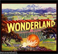 Escondido San Diego County Wonderland Orange Citrus Fruit Crate Label Print