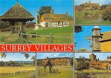 BR76313 villages newdigate ockley green  surrey   uk