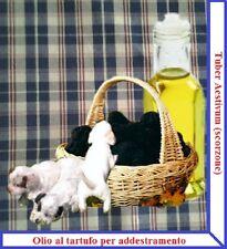 Olio con VERO tartufo Scorzone per addestramento cani
