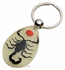 Real Black Scorpion With Red Dot Keychain