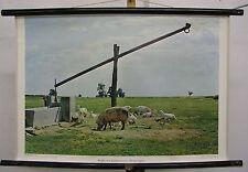 Schulwandkarte Wandkarte Pußta Brunnen Ziehbrunnen Schwein Ungarn Idyll 75x50