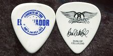 AEROSMITH 2013 Warming Tour Guitar Pick!!! BRAD WHITFORD custom concert stage
