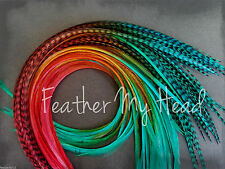 Ombre Tie Dye  Feather Extensions Real Grizzly Rooster Feathers Warm Colors  L6