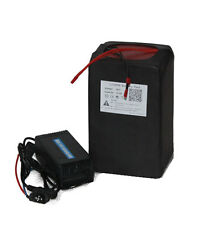 48V 10AH  LIFEPO4 BATTERY PACK POWER FOR EBIKE FREE CHARGER NEW CELL