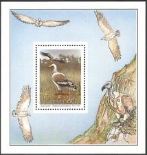 Transkei 1991 Egyptian Vulture/Raptors/Birds/Nature/Wildlife/Vultures f/s b7656