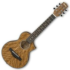 IBANEZ EWP14WB OPN Small size Acoustic Guitar Open Pore Natural