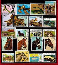 LAOS Les animaux sauvages, domestiques et nuisibles 82M276T6