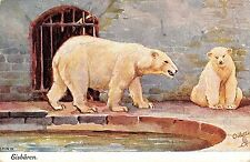 B98456 eisbaren polar bear ours  painting postcard switzerland animal animaux