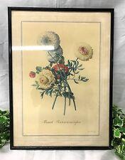 Georg Dionysius Ehret mezclado ranunculuses Vintage botánico Floral enmarcado impresión