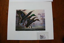 Louisiana Duck Stamp print 1998-1999 artist, R C Davis signed