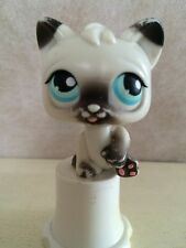Littlest Pet Shop No # - Magic Motion Black and White Siamese Cat with Blue Eyes