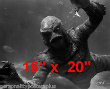 "Creature From The Black Lagoon~Game Room~Photo~Sci-Fi~CU~Poster 16"" x  20"""