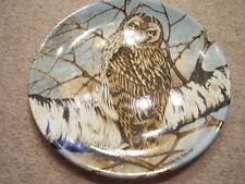 Coalport England Porcelain plate,signed,Short-Eared Owl
