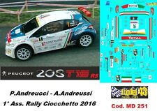 DECAL  1/43 - Peugeot  208 R5 - ANDREUCCI - Rally Ciocchetto  2016 - DECAL