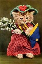 CAT, CHAT, KATZE, REAL CAT DRESSED WOMAN WITH FLOWERS, MAGNET
