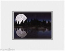 New SERENITY by Andy Everson matted art print Comox Native Indian longhouses