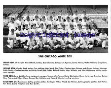 1968 White Sox Team Photo Comiskey Park Aparicio- Wood-Wilhelm--Boyer  B+W 8x10