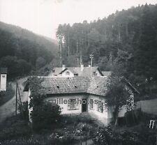 RIBEAUVILLE c. 1950 - La Pépinière Haut-Rhin Alsace - DIV305