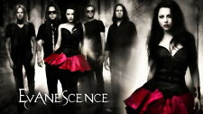 "35 Evanescence - Rock Band Music Star Amy Lee 25""x14"" Poster"