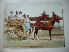 PHOTO ORIGINALE 1880 INCORPORA ITALIE CHARETTE ITALY