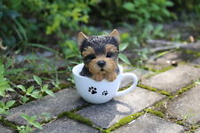 Yorkshire Terrier  Puppy Dog in a Cup Decoration Gift Resin 6 in. New Teacup