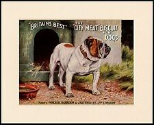 BRITISH BULLDOG GREAT DOG FOOD ADVERT PRINT MOUNTED READY TO FRAME