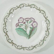 Set: 12 Vintage Royal Worcester Williamson Enameled Porcelain Botanical Plates