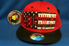 Pittsburgh Stars Stripes Red Flat Rimmed Snapback Sports Cap Hat Piranha Records