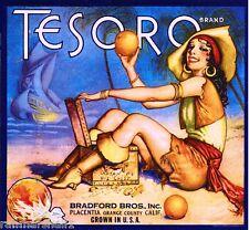 Placentia Fullerton Tesoro Pirate Orange Citrus Fruit Crate Label Vintage Print