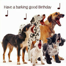Dogs Birthday Card 'Have a Barking Good Birthday' Funny Dog Greeting Card NEW