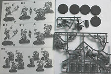 Warhammer Age of Sigmar Stormcast Eternal Liberators 5 miniatures on sprue