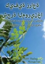 (Arabic Edition) How to Grow a Moringa Tree! : The Ultimate Study Guide to...