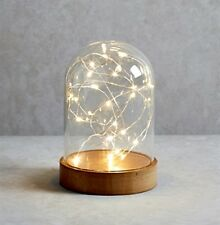 LED Luxury Glass Bell Jar Dome with String Light Table Lamp Christmas Decoration