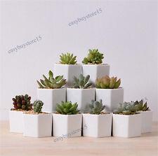 1x Hexagon White Ceramic Succulent Planter Miniature Flower Pots Office Decor