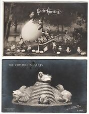 SUPER Postcard LOT of 2- Easter Real Photo - Chicks 1906 - RPPC Rotograph -  Egg