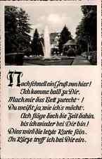 KÖNIGSFELD Schwarzwald Partie im Kurpark Pflanzen Botanik s/w AK um 1950/60