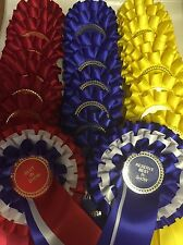 Lot de show rosettes 10 jeux 1st-3rd plus best in show et réserve best in show