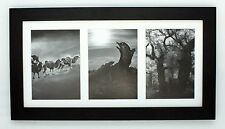 "7x14 Black Photo Wood Collage Frame with Mat displays (3) 4""x6 pictures"