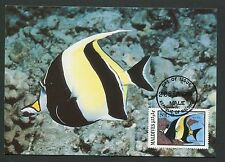MALEDIVEN MK FISCHE FISH HALTERFISCH MOORISH IDOL CARTE MAXIMUM CARD MC CM m121