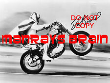 EVEL KNIEVEL Signed Autograph RP 8.5x11 Photo