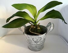 Artificial Orchid Leaves with Roots 30 cm DECORATIVE PLANT REAL TOUCH