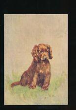 Dogs SUSSEX SPANIEL #25 De Reszke Cigarettes card PPC size 127x90mm c1920/30s?