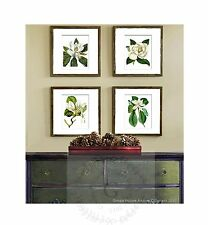 Botanical Wall Hanging set of 4 White Magnolia Southern Decor Housewarming Gift