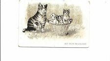 B81365 mother and cubs in bascket  cat chat front/back image