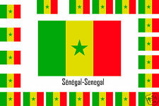 Assortiment lot de 10 autocollants Vinyle stickers drapeau Sénégal
