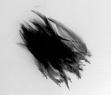 30 Quality Small Black Very Fine Hackle Feathers for Millinery and Crafts